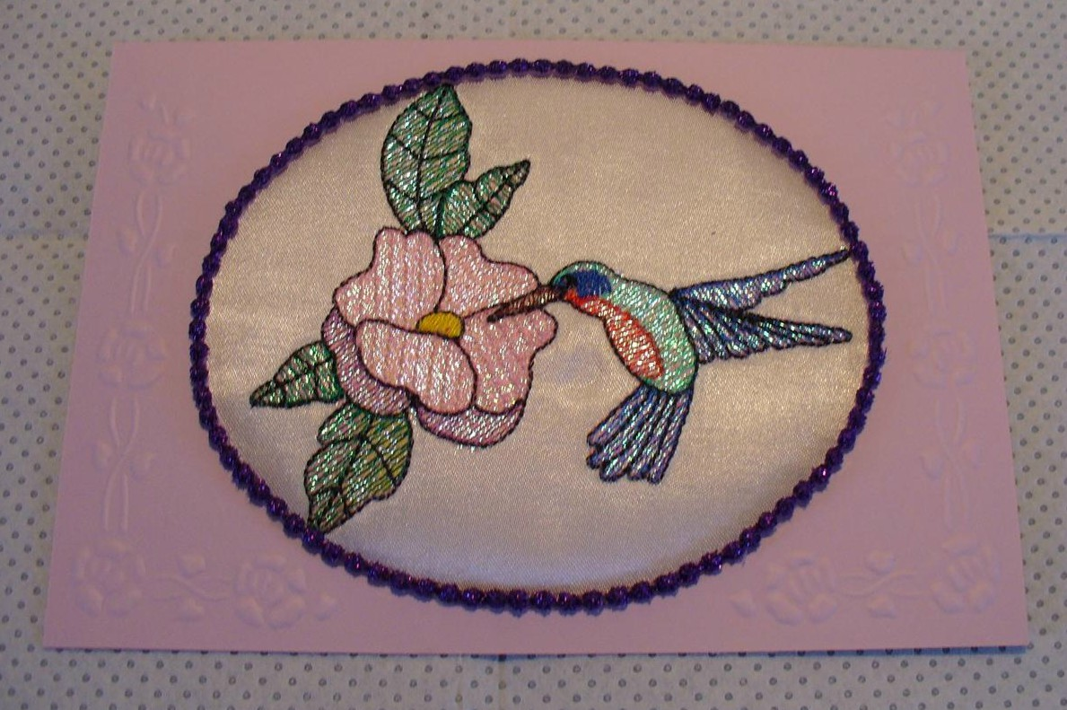 Stunning Hummingbird from Solange
