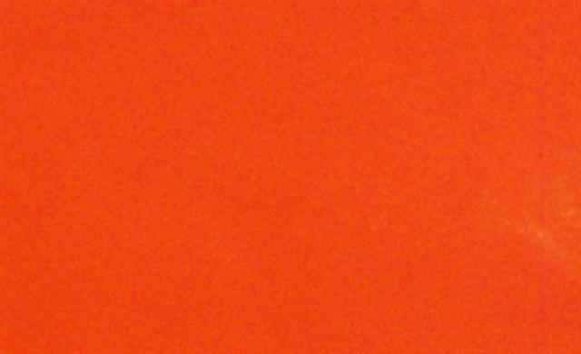 Neon Orange Related Keywords Neon Orange Long Tail